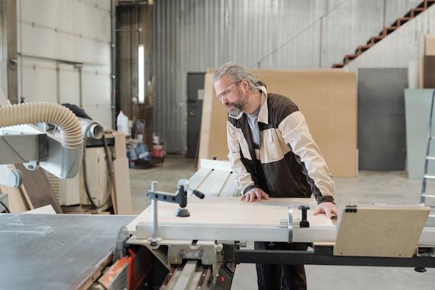 Trabalhador sênior da produção de móveis, que fixa a placa retangular de fábrica na bancada de trabalho antes de cortá-la ou moê-la com uma ferramenta elétrica