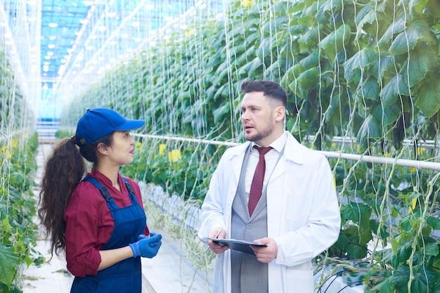 Trabalhadora falando com cientista na plantação moderna