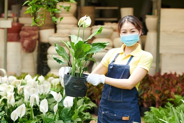 Trabalhadora positiva do centro de jardinagem feminina segurando o vaso com uma flor de lírio-da-paz desabrochando
