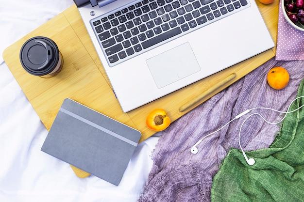 Trabalhando atrás de um laptop em um piquenique na natureza - ao lado de damascos