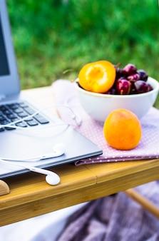 Trabalhar em um laptop em um piquenique na natureza - ao lado de uma tigela de cerejas e damascos