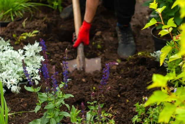Trabalhe no jardim cavando o solo com uma pá no meio do borrão
