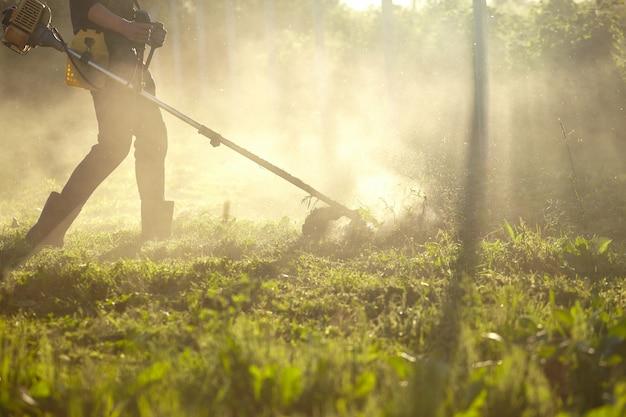 Trabalhe para cortar a aparadora de grama. o processo de cortar grama alta com um aparador. foco seletivo em tawa sem cortes e dispersar partículas de grama cortada. as luzes da noite abrem caminho através do nevoeiro