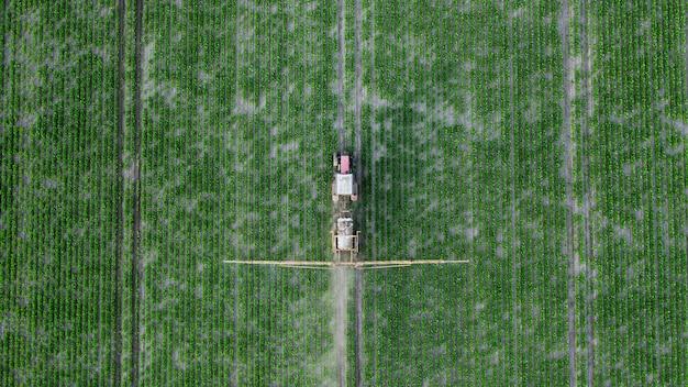 Trabalho agrícola de primavera nos campos. o trator pulveriza as plantações com herbicidas, inseticidas e pesticidas.