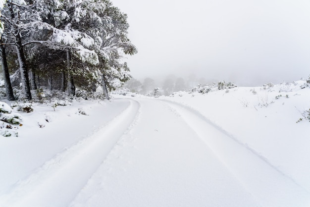 Traços das marcas de pneus de um carro na neve em uma estrada montanhosa.