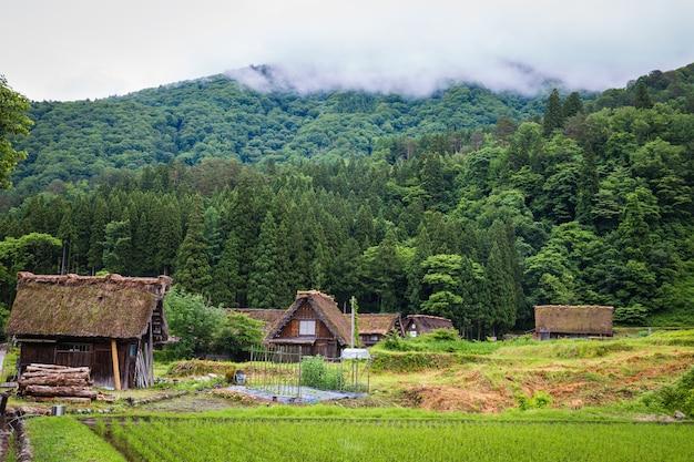 Tradicional e histórico aldeia japonesa shirakawago na província de gifu, japão, gokayama