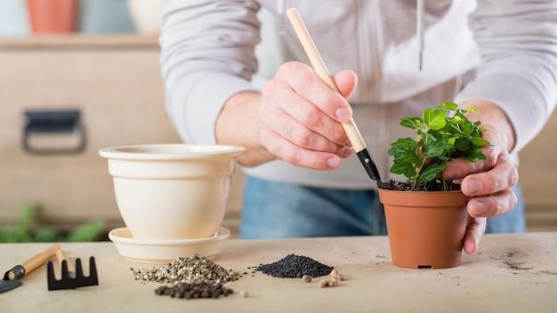 Transplante de plantas. conceito de cuidados da flora em casa. mãos replantando a planta de casa. ferramentas de jardim e solo para vasos.