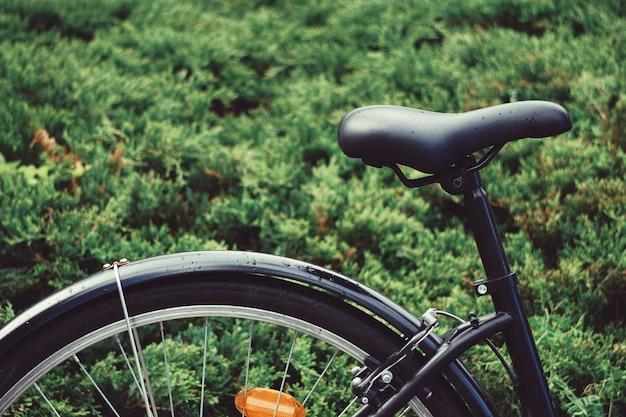 Transporte de assento de bicicleta na rua
