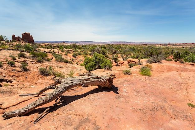 Trapos do deserto no vale do monumento, céu azul no fundo.