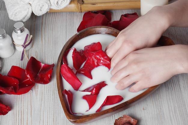 Tratamento de spa para pele com leite e pétalas de rosa, mãos colocadas na tigela