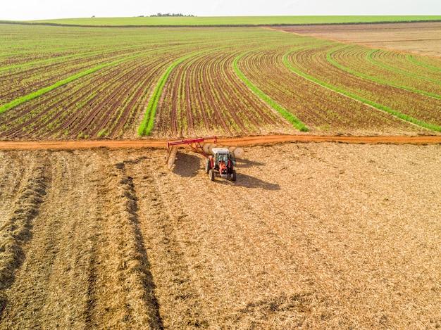 Trator ajuntando folhas secas de cana de açúcar no campo