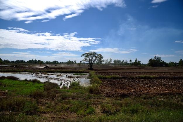 Trator está cultivando na paisagem da fazenda