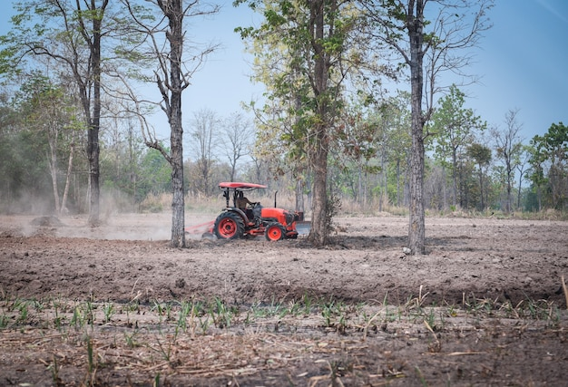 Trator na semeadura no campo