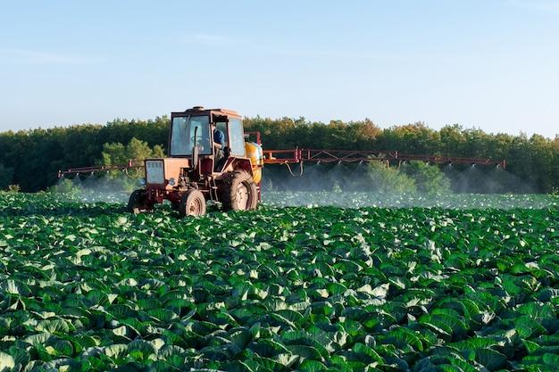 Trator pulveriza produtos químicos e pesticidas em um campo de fazendas com vegetais