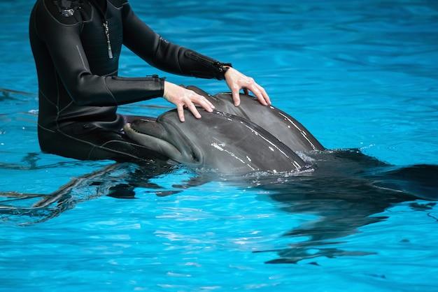 Treinador com dois golfinhos em um oceanário coberto.