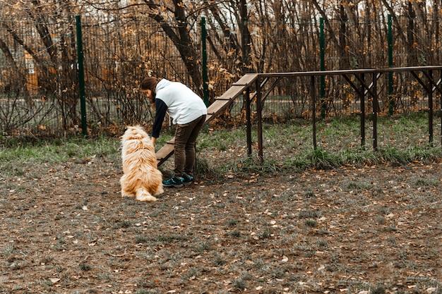 Treinamento de animais. uma garota voluntária anda com um cachorro de um abrigo de animais. menina com um cachorro no parque outono. ande com o cachorro. cuidando dos animais.