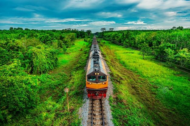 Treinar no transporte ferroviário na floresta e cor do pôr do sol