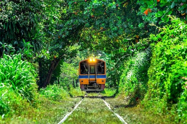 Treine através de um túnel de árvores em bangkok, tailândia.