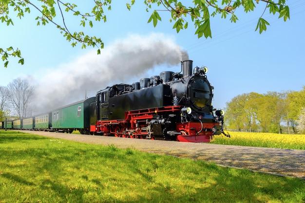 Trem a vapor alemão histórico passa pelos campos na primavera