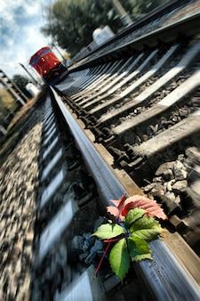 Trem apressado para a natureza indefesa