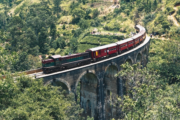 Trem cruzando a plantação de chá na ásia