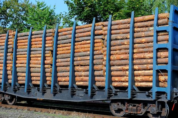 Trem de carga carregado com troncos de pinheiro