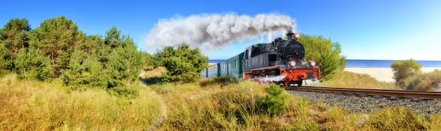 Trem de vapor alemão histórico na primavera, rugen, alemanha