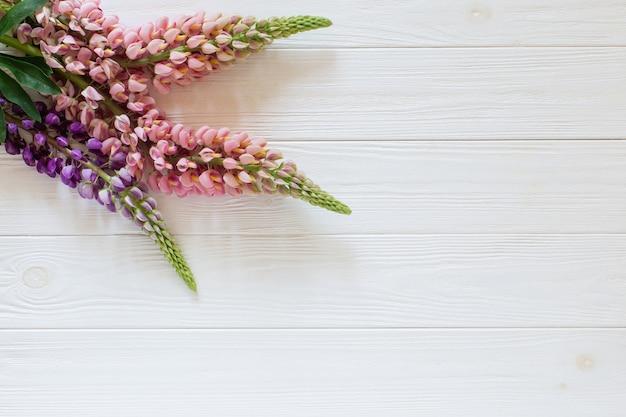Tremoço, sobre o fundo branco de madeira. copie o espaço para texto. flores planas leigos