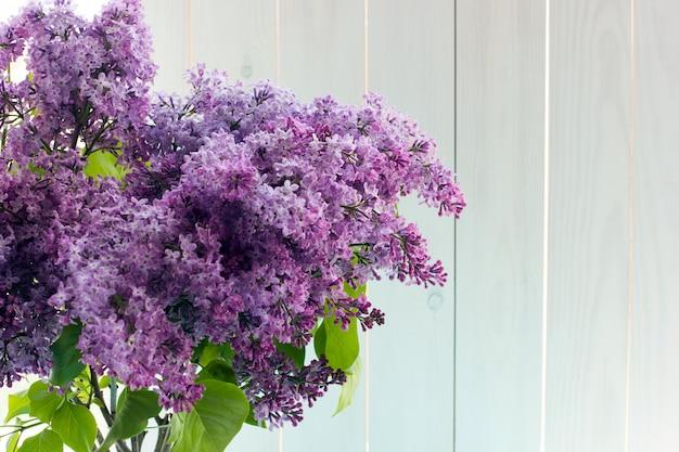 Três buquês de lilás em vasos redondos transparentes perto da janela