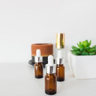 Três garrafas marrons de óleos essenciais com planta do cacto no fundo branco