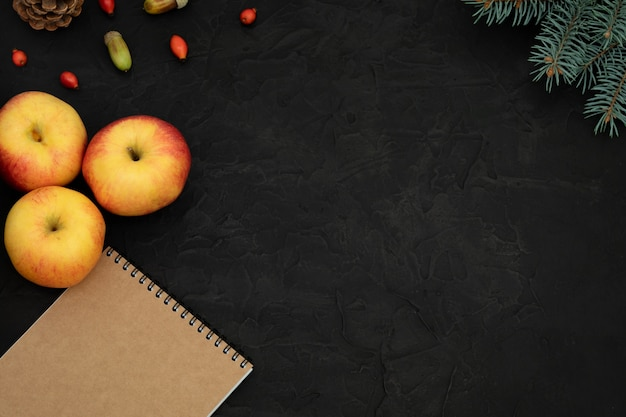 Três maçãs vermelhas amarelas, rosa mosqueta, bolotas, bloco de notas, pinha e ramo de abeto no fundo de concreto preto. vista de cima, cópia espaço, lay-out.
