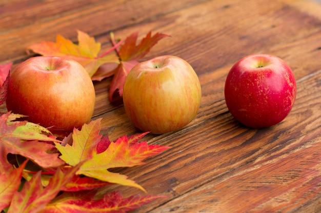 Três maçãs vermelhas maduras e folhas vibrantes de bordo de outono