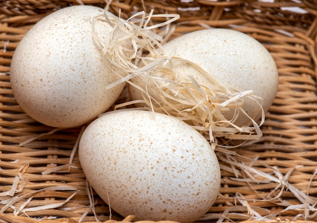 Três ovos de peru dentro de uma caixa
