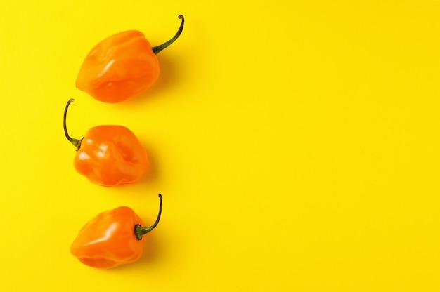 Três pimentas habanero