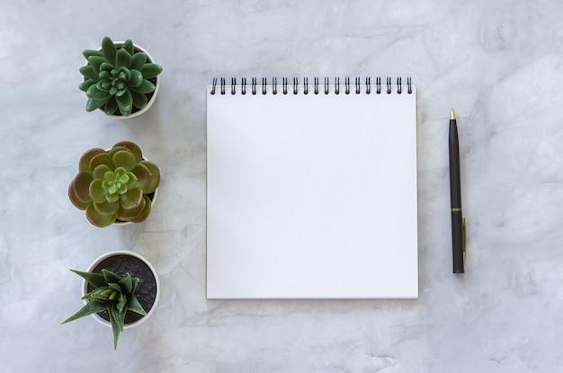 Três plantas carnudas e caderno aberto aberto branco, pena no fundo de mármore da tabela.
