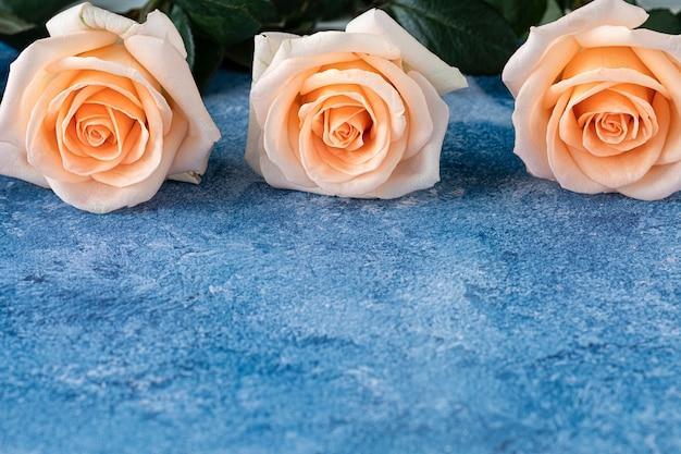 Três rosas de cor pêssego em um fundo de tinta acrílica azul e branca
