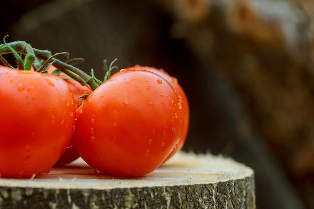 Três tomates com gotas de água no fundo de madeira