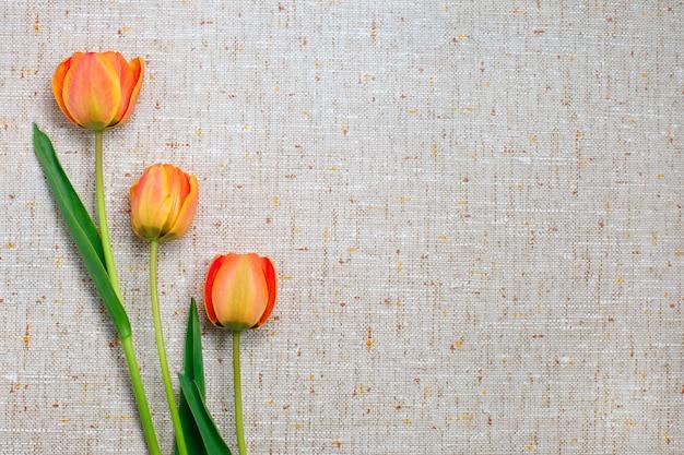 Três tulipas.