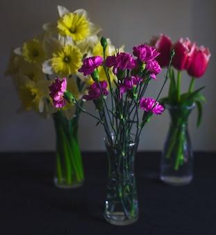 Três vasos de vidro de cravo, narciso, tulipas