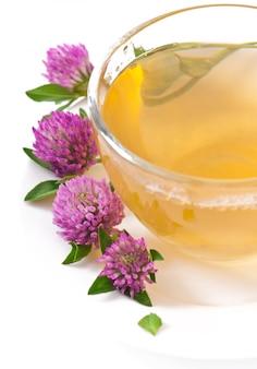 Trevo de folhas de chá de ervas