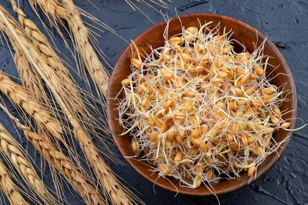 Trigo germinado em uma tigela de madeira com espigas de trigo. fechar-se