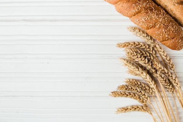 Trigo maduro e pão com espaço de cópia