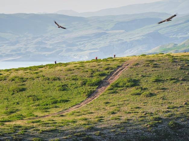 Trilha da manhã. caminhadas e trilhas para caminhadas na cordilheira no início da manhã. caminhe por um caminho estreito na montanha com uma vista deslumbrante do vasto vale verde.