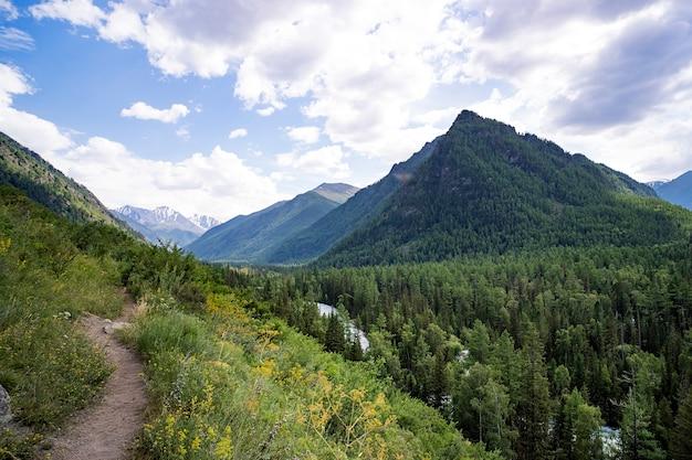 Trilha de montanha. caminho de montanha que leva ao topo da montanha. animais selvagens. cenário bonito.
