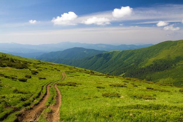 Trilha do carro de sujeira no monte gramíneo verde que conduz ao cume arborizado das montanhas no turismo brilhante do espaço da cópia do céu azul e no conceito de viagem.