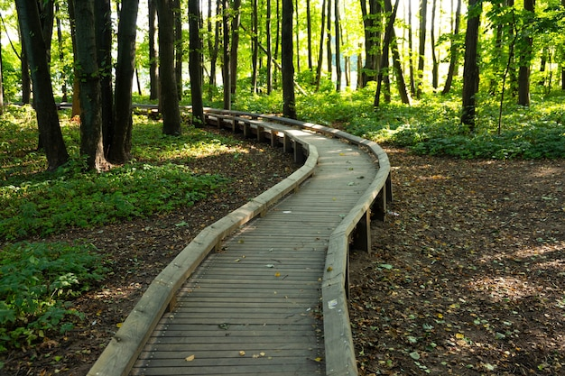 Trilha ecológica no parque da cidade europeia.
