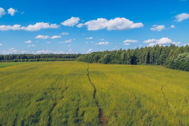 Trilha na grama do campo. paisagem pitoresca de verão prado com nuvens sobre fundo de vista do céu azul maravilhoso. foto de estoque de campo de pastagem verde.