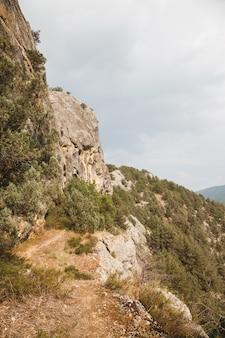 Trilha no alto das montanhas. serpente perigosa