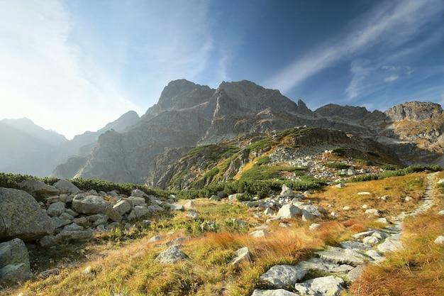 Trilha no vale que leva ao pico das montanhas dos cárpatos
