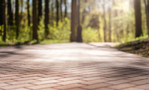 Trilhas pavimentadas com azulejos no parque da cidade